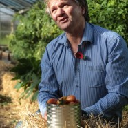 Man sat on straw bales in front of tomato plants